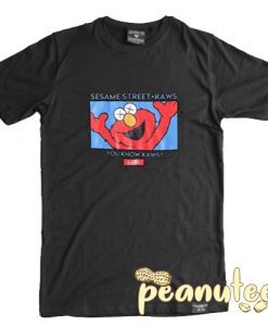 Kaws x Sesame Street You Know Kaws T Shirt