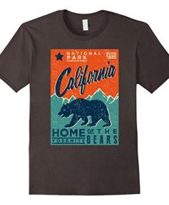 National Park Bears Gift for Camp Hike T-Shirt AY