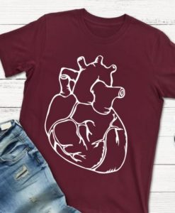 anatomical heart AY